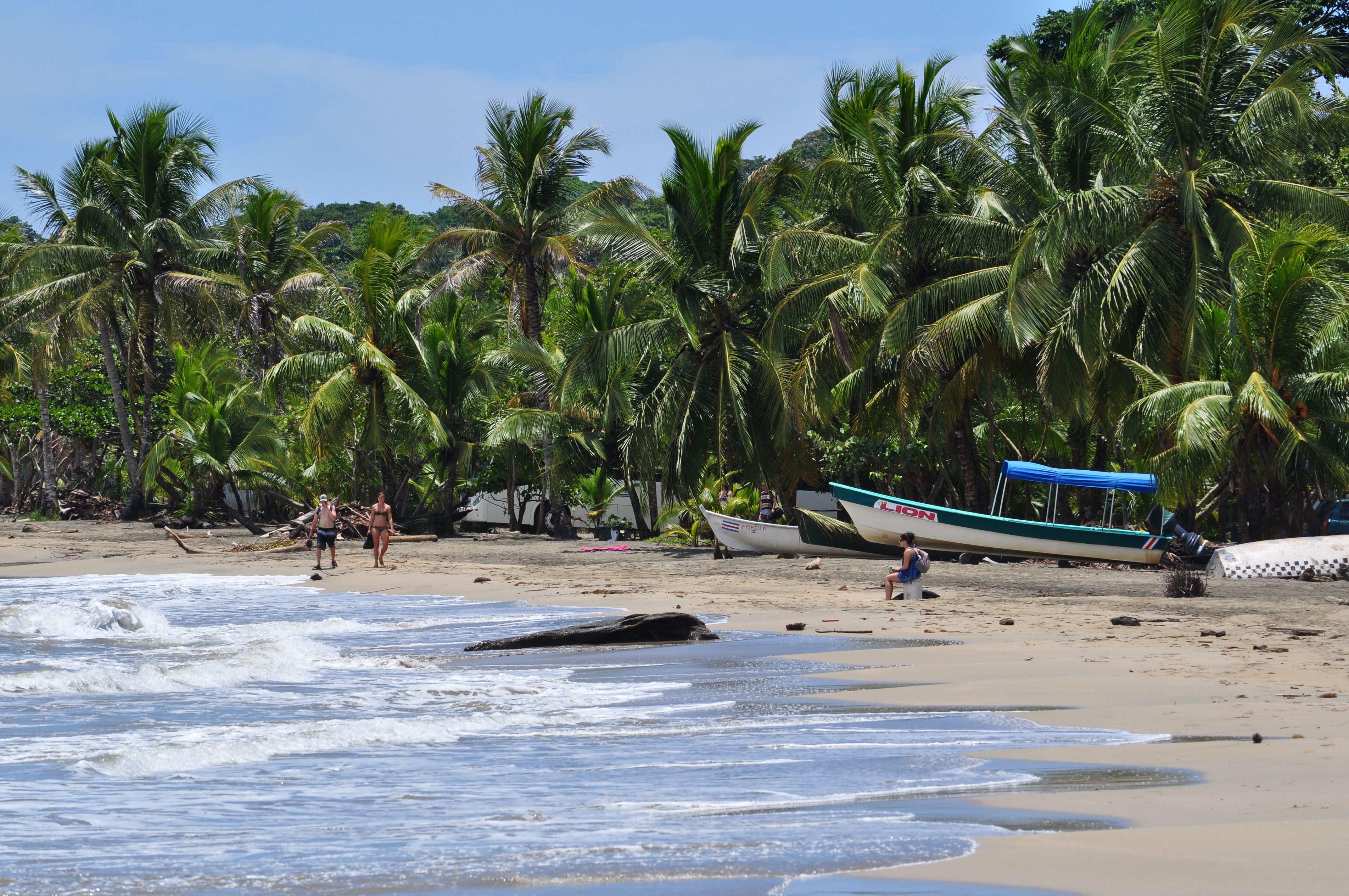 Del parque nacional tortuguero a puerto viejo de lim n las playas del caribe rutas por costa - Puerto limon costa rica ...