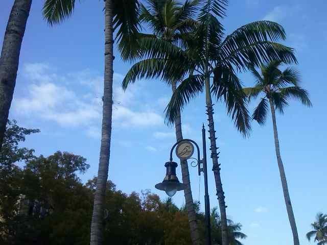 Amanecer en Naples. Florida