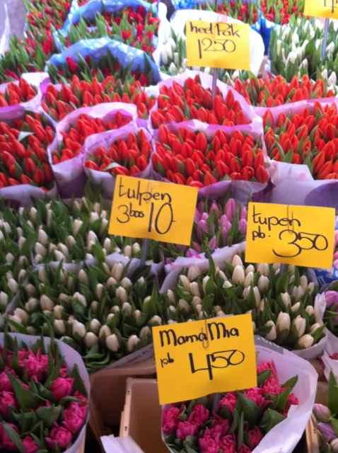 Tulipanes en el mercado Noordermarkt en Amsterdam