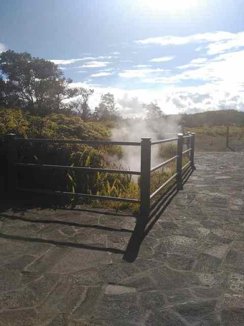 Los steam vents & steaming bluff Volcán Kilauea (Big Island)